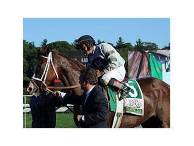 "Luis Saez and Will Take Charge after the Travers.<br><a target=""blank"" href=""http://photos.bloodhorse.com/AtTheRaces-1/at-the-races-2013/27257665_QgCqdh#!i=2722899189&k=Z4sfgms"">Order This Photo</a>"