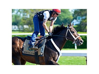 "Ride on Curlin <br><a target=""blank"" href=""http://photos.bloodhorse.com/TripleCrown/2014-Triple-Crown/Belmont-Stakes-146/i-vmG587m"">Order This Photo</a>"