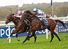 "Noble Mission fights off Al Kazeem to win the QIPCO Champion Stakes.<br><a target=""blank"" href=""http://photos.bloodhorse.com/AtTheRaces-1/At-the-Races-2014/i-5x9x2MM"">Order This Photo</a>"