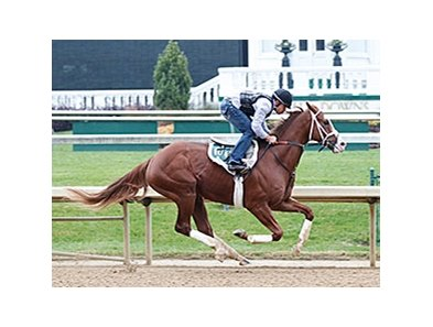 Will Take Charge breezed four furlongs Nov. 16 at Churchill Downs.
