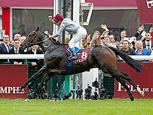 Treve wins the Qatar Prix de l'Arc de Triomphe.