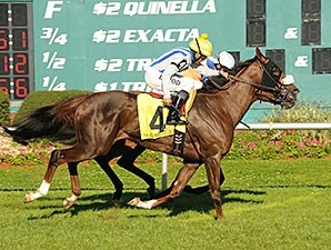Cloud Scapes outfinishes Waterway Run to win the Hillsborough Stakes.