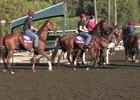 10/22 Breeders' Cup News Minute
