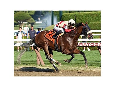 "Wicked Strong<br><a target=""blank"" href=""http://photos.bloodhorse.com/AtTheRaces-1/At-the-Races-2014/i-VWDmD6w"">Order This Photo</a>"