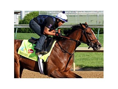 "Normandy Invasion sold for $230,000 at 2.<br><a target=""blank"" href=""http://photos.bloodhorse.com/TripleCrown/2013-Triple-Crown/Kentucky-Derby-Workouts/29026796_jvcnn8#!i=2488102563&k=hCMxPG6"">Order This Photo</a>"