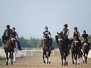 Street Boss Colt Among Top OBS Day 2 Workers