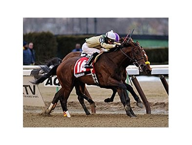 Samraat