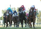 "Storming Inti (right) won the Kitten's Joy Stakes by a head on Jan 19.<br><a target=""blank"" href=""http://photos.bloodhorse.com/AtTheRaces-1/At-the-Races-2014/35724761_2vdnSX#!i=3031416723&k=vnLnSxg"">Order This Photo</a>"
