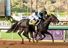Shared Belief 'Excellent' in Golden Gate Move