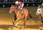 "Untapable takes on 4 in the Fair Grounds Oaks. <br><a target=""blank"" href=""http://photos.bloodhorse.com/AtTheRaces-1/at-the-races-2013/27257665_QgCqdh#!i=3144375142&k=rhkbzfK"">Order This Photo</a>"
