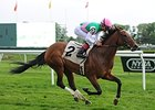 "Riposte comes home strong to win the Sheepshead Bay Stakes.<br><a target=""blank"" href=""http://photos.bloodhorse.com/AtTheRaces-1/At-the-Races-2014/i-QVhWK8F"">Order This Photo</a>"