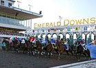 Higher Purses, Handle at Emerald Downs