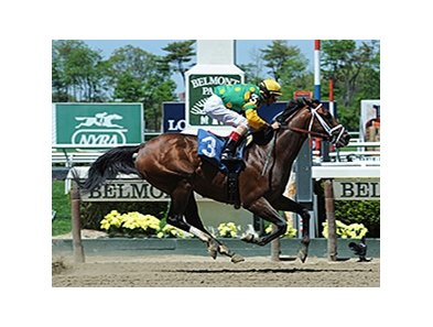 Palace Malice wins the Westchester Stakes.