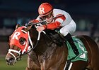 Admiral Kitten won the John B. Connally Turf Cup on January 25.