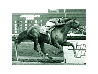 Bull Inthe Heather winning the 1993 Florida Derby (gr. I)