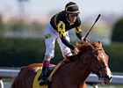 Odds-On Judy the Beauty Wins Madison Stakes