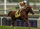 Wise Dan Again Finalist for Top Eclipse Award