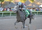 Zito May Take Shot With Spot in Florida Derby