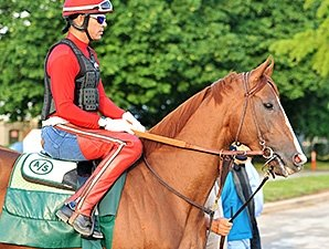 California Chrome Takes First Spin at Belmont