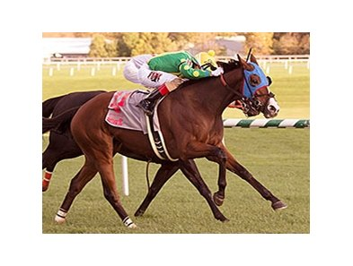 Talk Show Man gets by Ben's Cat to win the Maryland Million Turf.