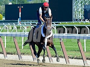Ride On Curlin works June 1.