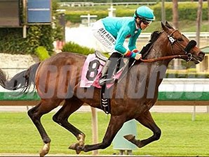 Story to Tell was an eye-catching maiden special weight winner May 23.