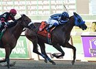 "Private Zone fights off Dads Caps to win the Vosburgh.<br><a target=""blank"" href=""http://photos.bloodhorse.com/AtTheRaces-1/At-the-Races-2014/i-GtjXHxd"">Order This Photo</a>"