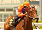 Beholder faces 5 in the Torrey Pines Stakes.