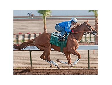 California Chrome went four furlongs at his Los Alamitos headquarters the morning of April 19 in :47 4/5.
