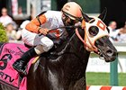 Ben's Cat