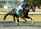 Black Onyx and Joe Bravo take the Horseshoe Casino Cincinnati Spiral Stakes.