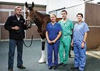 St Nicholas Abbey at Fethard Equine Hospital.