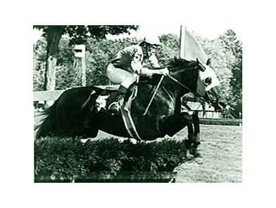 Joseph L. Aitcheson running in the 1978 Turf Writers Cup aboard Happy Intellectual.