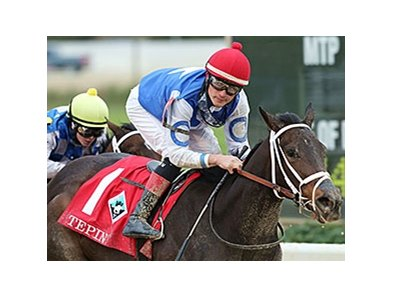 Tepin won the 2013 Delta Downs Princess.