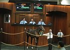 Hip 658, a colt by Big Drama, sold for $185,000 on August 28.