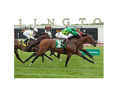 Finnegans Wake gets his head in front of Admiral Kitten to win the Arlington Handicap.