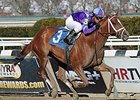 "Princess of Sylmar won the 2014 Cat Cay Stakes. <br><a target=""blank"" href=""http://photos.bloodhorse.com/AtTheRaces-1/At-the-Races-2014/35724761_2vdnSX#!i=3164454433&k=KkrSr4x"">Order This Photo</a>"