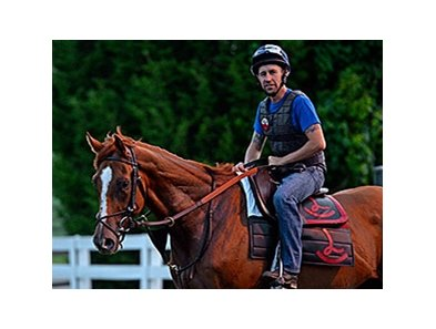 "Wise Dan <br><a target=""blank"" href=""http://photos.bloodhorse.com/Tracks/Keeneland/i-QPt5cHJ"">Order This Photo</a>"