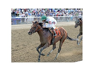Palace