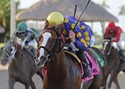 The 2014 Dr. Fager Stakes, being won by Sing Praises.