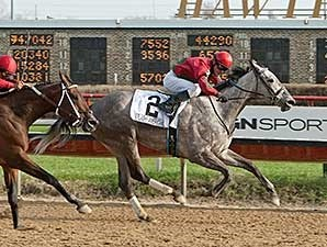 Flashy American rolls late to win the Sixty Sails Handicap.
