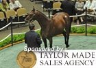 Fasig-Tipton Saratoga Select Sale Day 2 Wrap