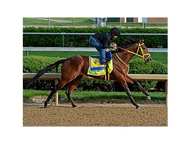 "Wildcat Red<br><a target=""blank"" href=""http://photos.bloodhorse.com/TripleCrown/2014-Triple-Crown/Kentucky-Derby-Workouts/i-jpPpSvL"">Order This Photo</a>"