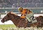 Wise Dan running in the Firecracker.