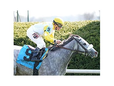 "Hard Not to Like comes through on the inside to win the  Jenny Wiley Stakes. <br><a target=""blank"" href=""http://photos.bloodhorse.com/AtTheRaces-1/At-the-Races-2014/35724761_2vdnSX#!i=3175506495&k=wkDCGWf"">Order This Photo</a>"