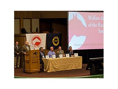 Day 2 of the Welfare & Safety of the Race Horse Summit.