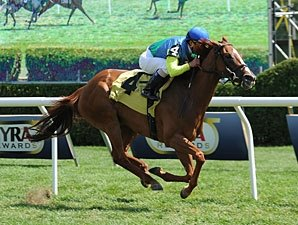 Dayatthespa, Big Blue Kitten on Whitney Card