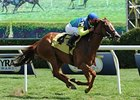 "Dayatthespa won the 2013 Yaddo Stakes. <br><a target=""blank"" href=""http://photos.bloodhorse.com/AtTheRaces-1/at-the-races-2013/27257665_QgCqdh#!i=2705986978&k=kbjZKC9"">Order This Photo</a>"