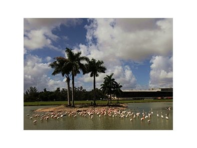 Hialeah Park is one of the tracks that will benefit from the Florida Bill.