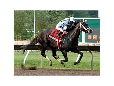 "Verrazano <br><a target=""blank"" href=""http://photos.bloodhorse.com/AtTheRaces-1/at-the-races-2013/27257665_QgCqdh#!i=2662515720&k=Hdf7pZD"">Order This Photo</a>"